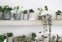 DIY Ideas / Neat ideas for crafting at home // do it yourself // crafting // diy inspiration // crafts // paper // plants // concrete // wood // interior // industrial // modern // antique