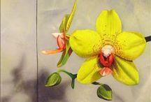 Oil Paintings of Flowers / Original Oil Paintings of Flowers by Artist Matthew Bates