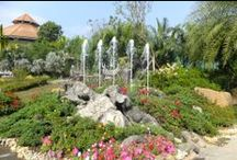 Ideas for garden's design / Beautiful places which can inspire you to create a garden of your dream