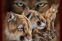 Animals in Art 4b