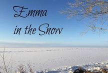 Emma in the Snow / Celebrate 200 years of Jane Austen's Emma with us! I hosted a series of guest blog posts from December 2015 to March 2016: http://sarahemsley.com/emma-in-the-snow/