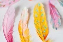 AC - Plumes (Feathers)