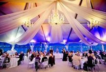 Tent Uplighting / #Tent #uplighting examples for your #event or #wedding #reception ! #DIY #Inspiration #Ideas
