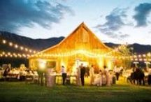 Rustic Theme Uplighting / #Rustic theme #uplighting examples for your #event or #wedding #reception ! #DIY #Inspiration #Ideas