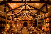 Winery Wedding Uplighting / #Winery #uplighting examples for your #event or #wedding #reception ! #DIY #Inspiration #Ideas