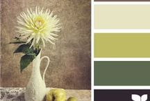 Colour Harmony / Choose the best colours to make your day better
