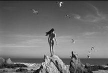 Photographer - Helmut Newton