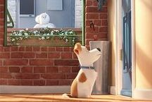 The Secret Life Of Pets!!!!!! ;)