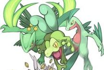 Treecko and others!!!!!!!!!!!!!!!!!!!!!!!!!!!!!!!!!!!