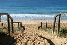 Sydney & Northern Beaches