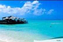 Playas de Aruba / Las mejores playas del mundo están en #Aruba.  Aguas cristalinas, arena blanca, atardeceres rojizos y palmeras frondosas, eso encontrarás en la Isla Feliz.
