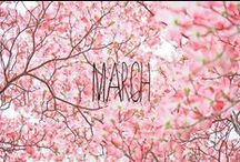 Months...step by step!