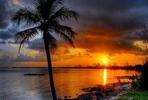 Nature   ( Beautiful skies )