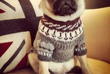 Knitts # Neuleet