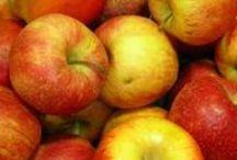 Æbler   Alt inden for Æbler / Opskrifter med æbler