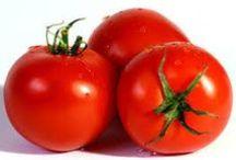 Tomat  opskrifter dansk tekst / Tomat  frugt fra denne plante, brugt som madvare, fx rå (i salat), kogt eller stegt forhandles friske eller konserverede, fx på dåse, tørrede, syltede eller som en koncentreret puré  planten blev i 1500-tallet indført til Europa fra Sydamerika; tilhører natskyggefamilien