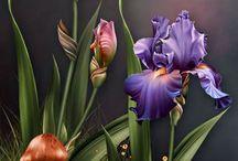 Art   ( Floral )