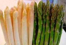 Asparges  dansk tekst / asparges   spiseligt, grønt eller hvidt, ungt skud fra aspargesplanten (Asparagus officinalis)