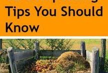 ^^Composting 101^^ / If you like the idea of adding compost to your flowers and vegetables, check out these resources to take the mystery out of the topic of composting.