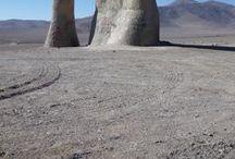 Beauty of the desert