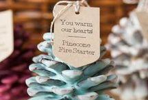 Pinecones / piñas / Tantas cosas para hacer con esas piñas que caen de tus árboles! / by Cordón de Oro
