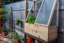 Gardening (green houses & co)