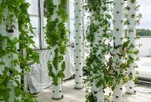 Gardening (vertical)