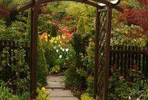 Gardening (arbors, trellis & co)