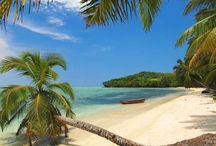 Tengerpart, óceán, szigetek, pálmafák ...    Beach, ocean, islands, palm trees ...