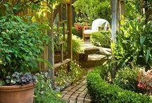 Pihenőhely, medence, terasz ...          Back garden, indoor garden, pool, terrace, resting place ...