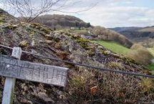 Westerwald / Der Westerwald in Rheinland-Pfalz. Ein schönes Wanderziel zu allen Jahreszeiten.