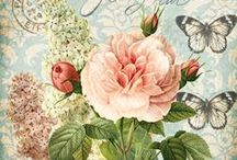 Pictures for decoupage / by Matilda Belous