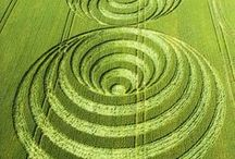 Crop Circles (Graancirkels) / Crop Circle pictures that I like. Whether they are real or not.