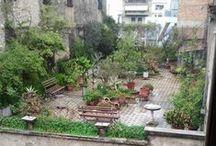 Tuin/dakterras/balkon - Garden/roof terrace/balcony