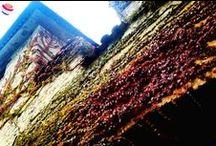#AsoloBlogTour / Promuovere una dimensione sempre più partecipativa ed esperienziale della meta turistica.  #AsoloBlogTour ha toccato i luoghi più suggestivi dei tre Comuni (Asolo, Fonte, San Zenone degli Ezzelini), come:  i Sentieri degli Ezzelini percorsi in bicicletta,  il Maglio di Pagnano,  l'Oasi di San Daniele,  il centro storico di Asolo con la Rocca punti degustazione delle eccellenze del gusto: formaggio, Prosecco Docg e 'Acqua di Fonte