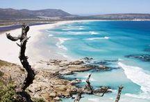5 // S O U T H   A F R I C A / #southafrica #capetown #travel #tablemountain