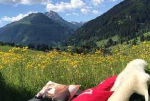 Tirol Sommer