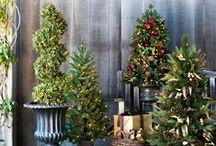 Topiary Trees / Topiary trees are welcoming accents to entryways, porches and more. Here is a collection of our favorite topiary trees and decorating tips.
