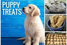 Puppy Love / We know you love your cute and fluffy pups. Here are some homemade dog treats that we promise your fur-babies will love! (oh and some adorable pictures of puppies)