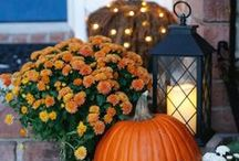 Fall in Love / See how our talented bloggers add a vibrant touch of autumn with our new fall collection. Find inspiring ideas for creating a seasonal look for your home.