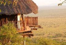 Kenya / Kenya safaris. For more info visit > http://www.journeysbydesign.com/