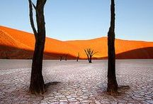Namibia / Luxury safaris in Namibia. For more info visit > http://www.journeysbydesign.com/