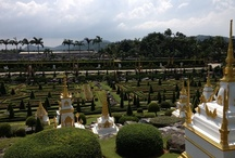 Garden  / Garden pattaya