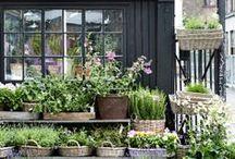 ❁ FLOWER SHOPS ❁ / Amazing flower shops around the globe  #broekhof #packaging #florist