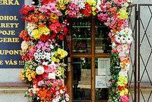 ❁ AMAZING SHOPS ❁ / Fantastische winkelconcepten. Voeding voor inspiratie!  #flowers #packaging #broekhof #holland