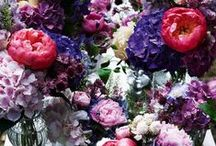 ❁ WINTER FLOWERS ❁ / Lovely flower- and bouquet-inspiration which will brighten up your winter!
