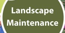 Landscape Maintenance / Check the sections below for advice on various yard maintenance tasks.