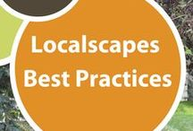 Localscapes Best Practices / While not strictly required, these landscape best practices will make creating and managing your localscape much simpler and more efficient. Pins include landscape maintenance, landscape installation, garden design tips and more.