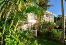 Garden, Ocean View and Ocean Front Suites at Cobblers Cove Hotel Barbados / Caribbean Colonial style with English Country House comfort is to be found in these spacious suites. Your room will have locally made cane furniture, vintage ceramic lamps, hand blocked linen fabrics, original art,  hand woven grass baskets made locally, original art and Bajan ceramics. The beach and restaurant is just a few yards away. The bedrooms are air conditioned, with goose down pillows, Egyptian cotton sheets, and seersucker robes.