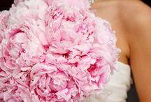 Mariage Rose